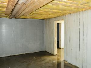 basement encapsulation, evergreen home performance, ME