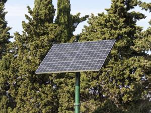 solar panel against forest