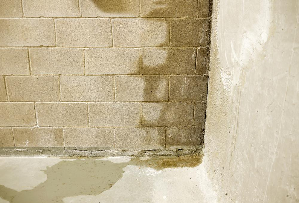 wet concrete walls in basement